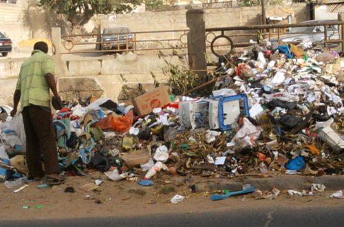 Article : Les ordures dans le quotidien des dakarois