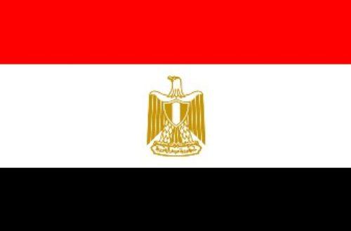 Article : Scrutin parlementaire le 28 novembre en Egypte