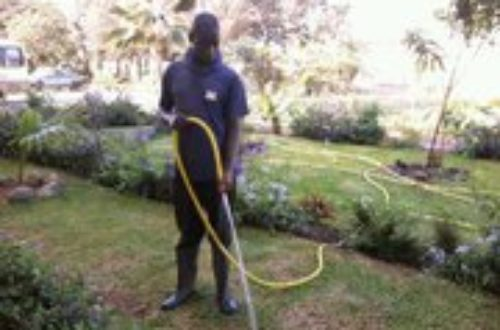 Article : Edouard, un agent de nettoyage doublé de jardinier